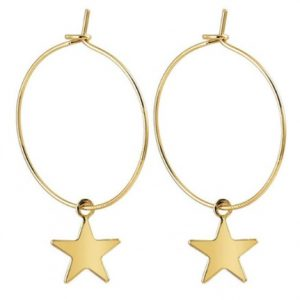 hoop, earrings, star, gold