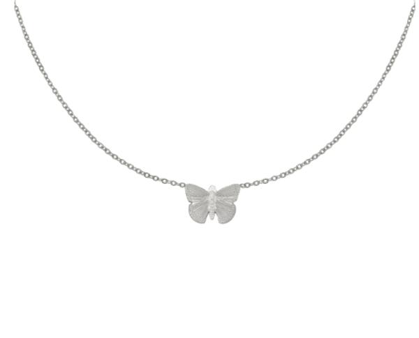 ketting met hangertje, vlinder, stainless steel, rvs, sieraden , accessoires, dames, roest vrij staal