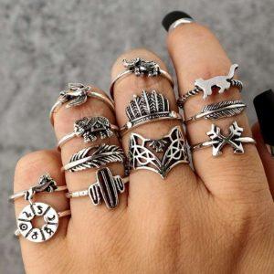 ringen set, zilver, sieraden, kompas, cactus, kat