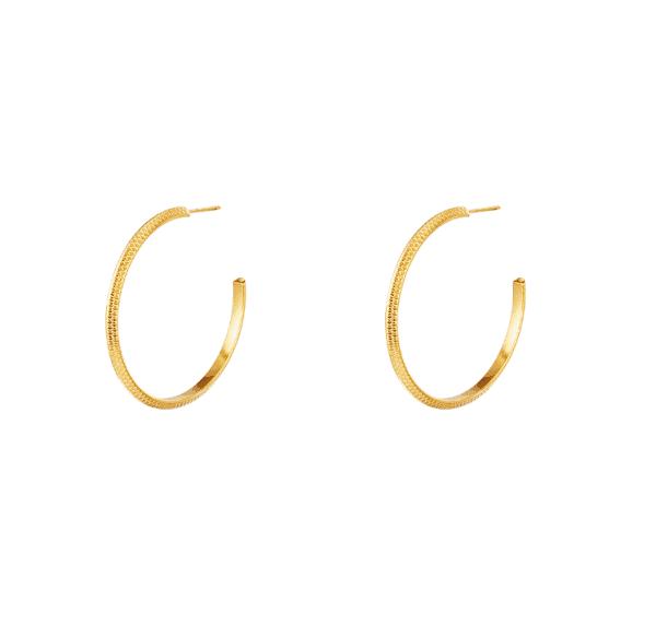 stainless steel oorbellen, hoops, sieraden, dames, accessoires, roestvrij staal, nikkelvrij
