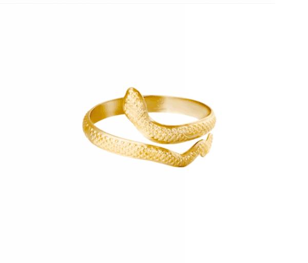 verstelbare ring, slang, stainless steel, roestvrij staal, sieraden, accessoires
