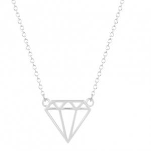 Zilver Diamant Ketting.Klik hier voor meer leuke kettingen.Shop alle musthave sieraden bij aphrodite. Gratis verzending en cadeau.Bestel snel en veilig.